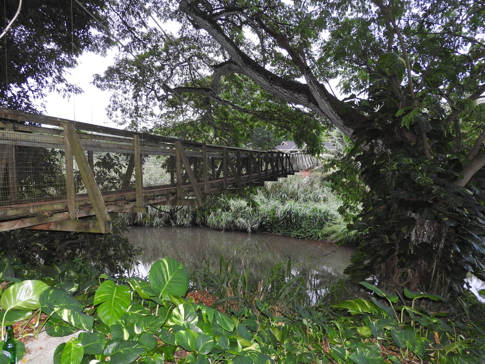 Bridgehunter Com Kapaa Stream Swinging Bridge